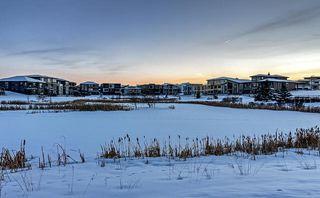Photo 29: 2784 Wheaton Drive in Edmonton: House for sale