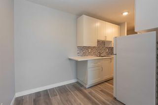 Photo 9: 406 635 57 Avenue SW in Calgary: Windsor Park Apartment for sale : MLS®# A1024733
