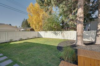 Photo 50: 10815 Maplecreek Drive SE in Calgary: Maple Ridge Detached for sale : MLS®# A1038611