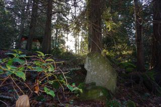Photo 10: 240 MARINERS Way: Mayne Island Land for sale (Islands-Van. & Gulf)  : MLS®# R2520914
