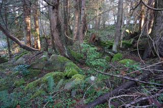 Photo 11: 240 MARINERS Way: Mayne Island Land for sale (Islands-Van. & Gulf)  : MLS®# R2520914