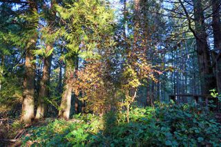 Photo 5: 240 MARINERS Way: Mayne Island Land for sale (Islands-Van. & Gulf)  : MLS®# R2520914