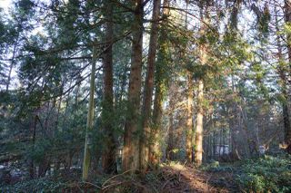 Photo 6: 240 MARINERS Way: Mayne Island Land for sale (Islands-Van. & Gulf)  : MLS®# R2520914
