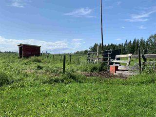 Photo 24: 1519 TWP RD 584: Rural Barrhead County House for sale : MLS®# E4167343