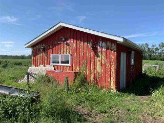 Photo 21: 1519 TWP RD 584: Rural Barrhead County House for sale : MLS®# E4167343
