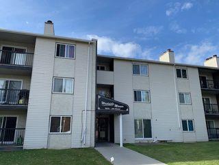Main Photo: 110 9816 156 Street in Edmonton: Zone 22 Condo for sale : MLS®# E4181789