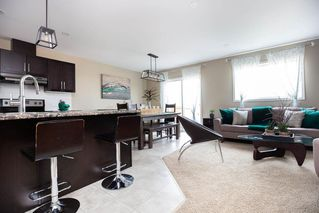 Photo 15: 178 Donna Wyatt Way in Winnipeg: Crocus Meadows Residential for sale (3K)  : MLS®# 202011410