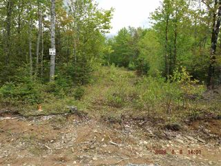 Photo 1: Lot CM-2H McKenzie Lane in Mount Uniacke: 105-East Hants/Colchester West Vacant Land for sale (Halifax-Dartmouth)  : MLS®# 202022951