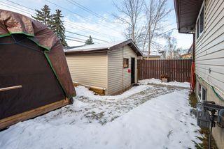 Photo 27: 3137 Doverville Crescent SE in Calgary: Dover Semi Detached for sale : MLS®# A1050547
