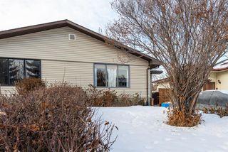 Photo 3: 3137 Doverville Crescent SE in Calgary: Dover Semi Detached for sale : MLS®# A1050547