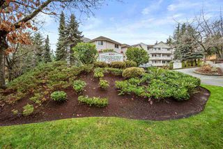 Main Photo: 404 450 BROMLEY Street in Coquitlam: Coquitlam East Condo for sale : MLS®# R2519968