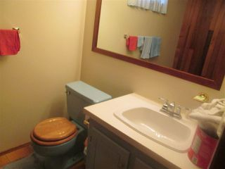 Photo 17: 3619 108 Street in Edmonton: Zone 16 House for sale : MLS®# E4173957
