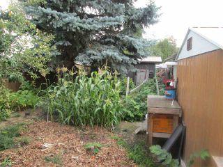 Photo 23: 3619 108 Street in Edmonton: Zone 16 House for sale : MLS®# E4173957