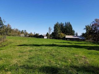 Photo 11: 30189 OLD YALE Road in Abbotsford: Aberdeen House for sale : MLS®# R2412392