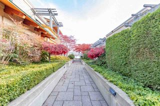 """Photo 19: 206 550 17TH Street in West Vancouver: Ambleside Townhouse for sale in """"THE HOLLYBURN"""" : MLS®# R2419647"""