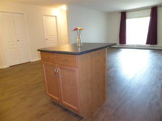 Photo 5: 131 2436 Guardian Road NW in Edmonton: Zone 58 Condo for sale : MLS®# E4210360