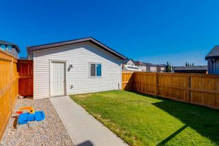 Photo 24: 182 SILVERADO PLAINS Circle SW in Calgary: Silverado Detached for sale : MLS®# A1031378