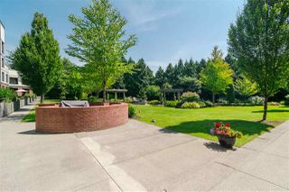 "Photo 23: 213 8880 202 Avenue in Langley: Walnut Grove Condo for sale in ""The Residences at Village Square"" : MLS®# R2512330"