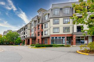 "Photo 25: 213 8880 202 Avenue in Langley: Walnut Grove Condo for sale in ""The Residences at Village Square"" : MLS®# R2512330"