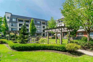 "Photo 24: 213 8880 202 Avenue in Langley: Walnut Grove Condo for sale in ""The Residences at Village Square"" : MLS®# R2512330"