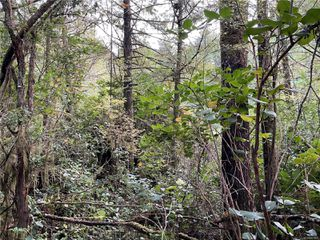 Photo 17:  in : PA Ucluelet Land for sale (Port Alberni)  : MLS®# 861692