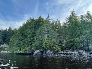 Photo 11:  in : PA Ucluelet Land for sale (Port Alberni)  : MLS®# 861692