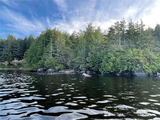 Photo 6:  in : PA Ucluelet Land for sale (Port Alberni)  : MLS®# 861692