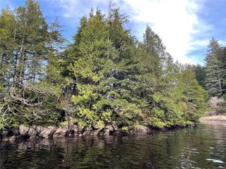 Photo 9:  in : PA Ucluelet Land for sale (Port Alberni)  : MLS®# 861692