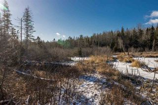 Photo 4: Lot Greenfield Road in Greenfield: 404-Kings County Vacant Land for sale (Annapolis Valley)  : MLS®# 202025611