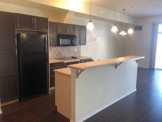 Photo 3: 341 4827 104A Street in Edmonton: Zone 15 Condo for sale : MLS®# E4170386