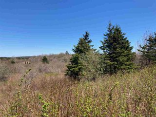 Photo 3: 7156 Highway 207 in West Chezzetcook: 31-Lawrencetown, Lake Echo, Porters Lake Vacant Land for sale (Halifax-Dartmouth)  : MLS®# 202008486