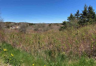 Photo 6: 7156 Highway 207 in West Chezzetcook: 31-Lawrencetown, Lake Echo, Porters Lake Vacant Land for sale (Halifax-Dartmouth)  : MLS®# 202008486