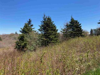 Photo 4: 7156 Highway 207 in West Chezzetcook: 31-Lawrencetown, Lake Echo, Porters Lake Vacant Land for sale (Halifax-Dartmouth)  : MLS®# 202008486
