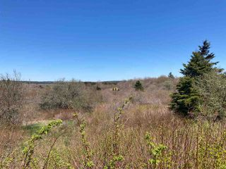 Photo 2: 7156 Highway 207 in West Chezzetcook: 31-Lawrencetown, Lake Echo, Porters Lake Vacant Land for sale (Halifax-Dartmouth)  : MLS®# 202008486