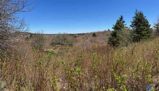 Main Photo: 7156 Highway 207 in West Chezzetcook: 31-Lawrencetown, Lake Echo, Porters Lake Vacant Land for sale (Halifax-Dartmouth)  : MLS®# 202008486