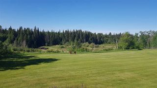 Photo 44: 56, 240065 TWP RD 472 Crescent E: Rural Strathcona County House for sale : MLS®# E4200588