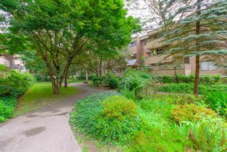 """Photo 2: 33 2432 WILSON Avenue in Port Coquitlam: Central Pt Coquitlam Condo for sale in """"ORCHARD VALLEY"""" : MLS®# R2485264"""