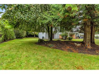"""Photo 39: 4 8220 121A Street in Surrey: Queen Mary Park Surrey Townhouse for sale in """"BARKERVILLE II"""" : MLS®# R2508903"""