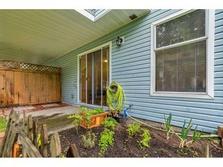"""Photo 35: 4 8220 121A Street in Surrey: Queen Mary Park Surrey Townhouse for sale in """"BARKERVILLE II"""" : MLS®# R2508903"""
