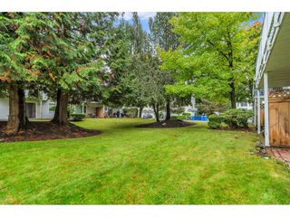 """Photo 36: 4 8220 121A Street in Surrey: Queen Mary Park Surrey Townhouse for sale in """"BARKERVILLE II"""" : MLS®# R2508903"""