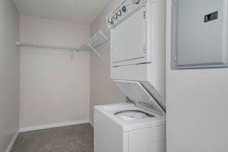 Photo 24: 1301 7339 SOUTH TERWILLEGAR Drive in Edmonton: Zone 14 Condo for sale : MLS®# E4166801
