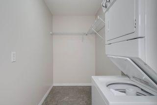 Photo 25: 1301 7339 SOUTH TERWILLEGAR Drive in Edmonton: Zone 14 Condo for sale : MLS®# E4166801