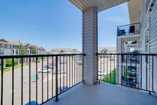Photo 27: 1301 7339 SOUTH TERWILLEGAR Drive in Edmonton: Zone 14 Condo for sale : MLS®# E4166801