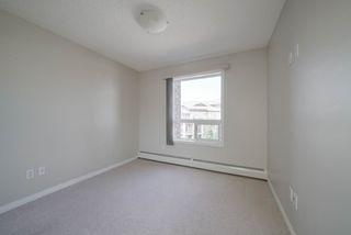 Photo 22: 1301 7339 SOUTH TERWILLEGAR Drive in Edmonton: Zone 14 Condo for sale : MLS®# E4166801