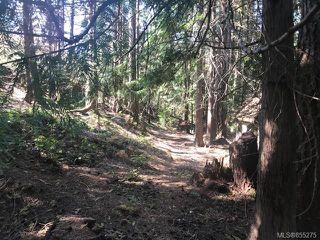 Photo 18: 1073 Glen Forest Way in : Me Metchosin House for sale (Metchosin)  : MLS®# 855275