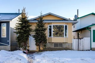 Main Photo: 6081 Martingrove Road NE in Calgary: Martindale Detached for sale : MLS®# A1061535