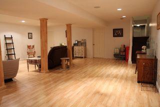 Photo 11: 5813 Centennial Drive: Elk Point House for sale : MLS®# E4204090