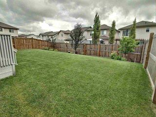 Photo 7: 16415 138 Street NW in Edmonton: Zone 27 House for sale : MLS®# E4204137