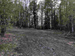 Photo 7: 633 Rge Rd 261 A: Rural Westlock County Rural Land/Vacant Lot for sale : MLS®# E4204995