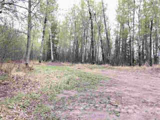Photo 8: 633 Rge Rd 261 A: Rural Westlock County Rural Land/Vacant Lot for sale : MLS®# E4204995